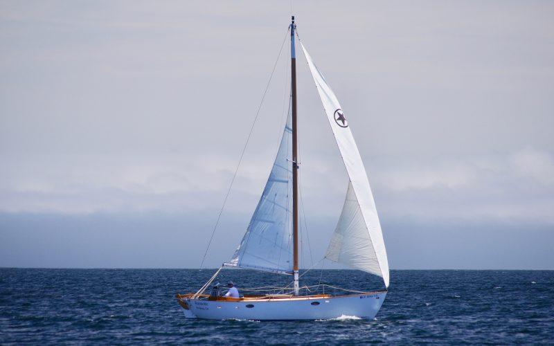 IMGP6643