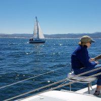 Sailing in monterey Gemini Freestyle