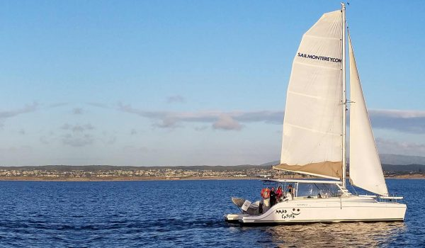 mmad-catter-sail-boat-monterey