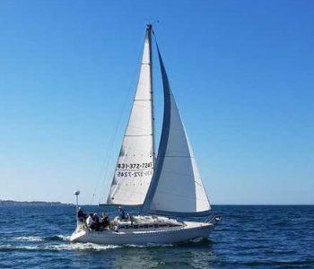 soaring and sailing 1